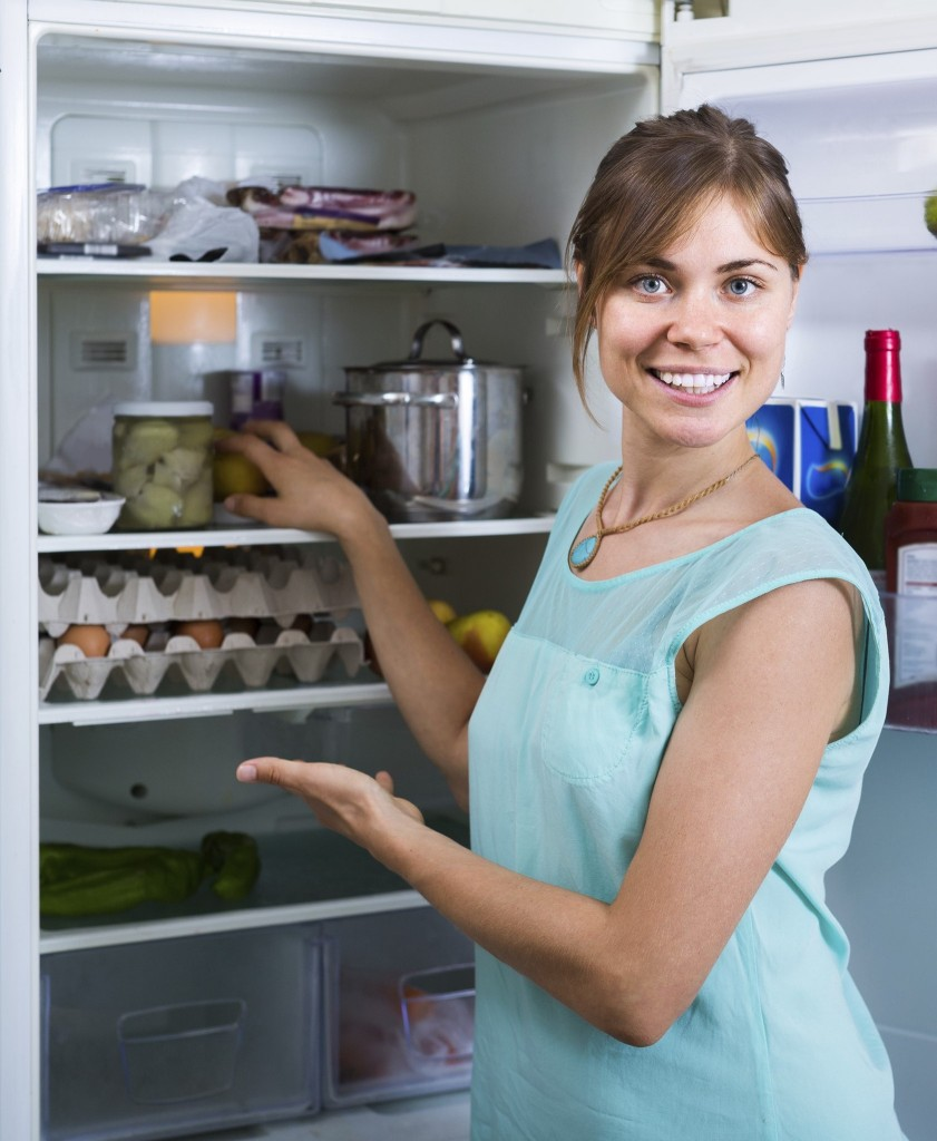 refrigerator repairs long island, refrigerator repairs queens, refrigerator repairs suffolk county, energy saving tips, appliance energy usage tips, refrigerator repair long island, energy efficient kitchen