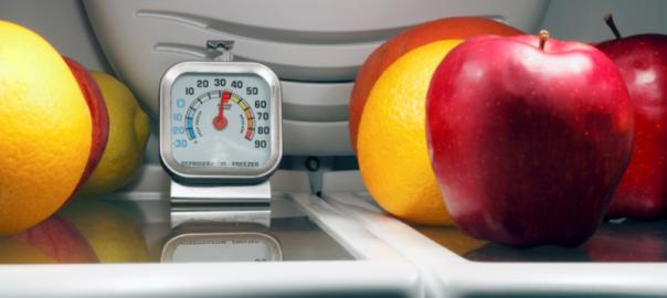 fridges-temperature-speedy-refrigerator-service