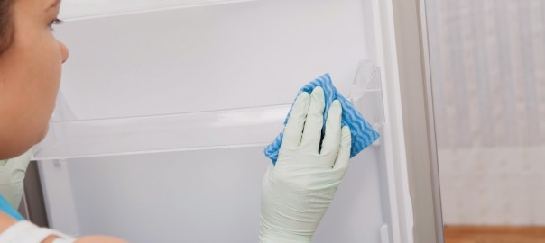 Cleaning Refrigerator Gasket | Suffolk County Refrigeration Service