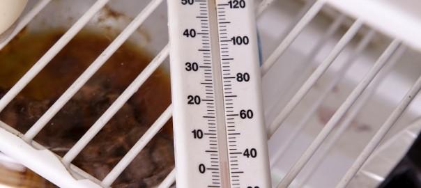 Refrigerator Temperature | Queens Frigidaire Refrigerator Repair