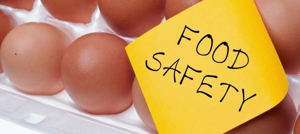 Food Safety Eggs | Speedy Refrigerator Service