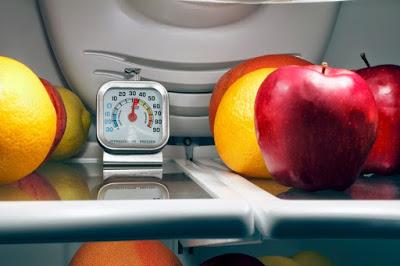 Refrigerator Thermometer | Speedy Refrigerator Service